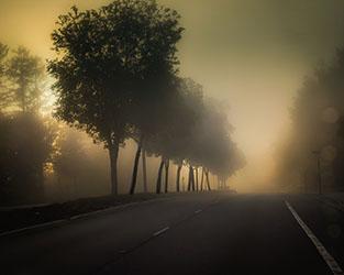 42Debi-Aquino-2_Fog.jpg